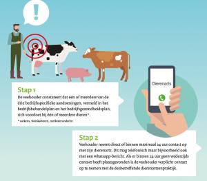 brochure-antibiotica-in-de-veehouderij-afbeelding